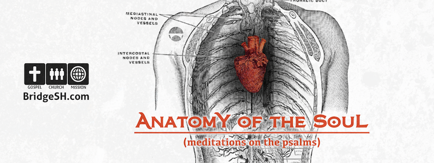 Anatomy of the Soul (2013)